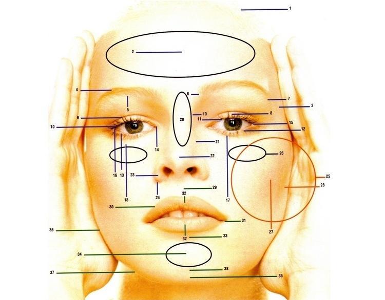 Radiografia do Rosto
