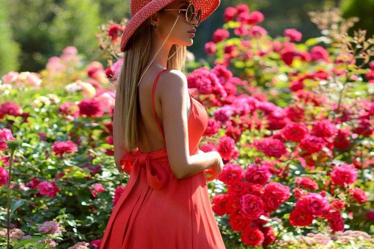 Vermelho a cor vibrante do verão